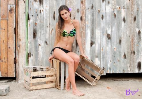 bikinis 7 copy