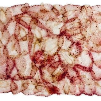 Alfons Koller_Papyri Erdbeere